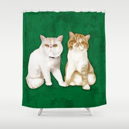 Teagues and Oliver Shower Curtain