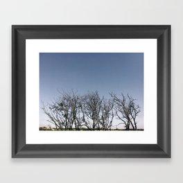 Dunes II Framed Art Print