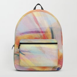 Inside the Rainbow 3 Backpack
