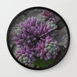Rock moss - Art macro photography (near the Studen Kladenets dam, Bulgaria) Wall Clock