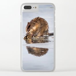 Muskrat on the ice Clear iPhone Case