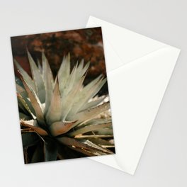 Agave in the Desert Stationery Cards