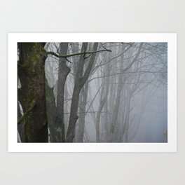 Chuckanut Drive, Washington Art Print
