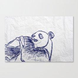 Panda doodles Canvas Print
