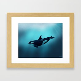 """Lost in Serenity"" by Amber Marine ~ Orca / Killer Whale Art, (Copyright 2015) Framed Art Print"
