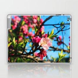 Grandma's Pink Flowers Laptop & iPad Skin