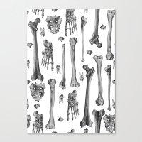bones Canvas Prints featuring Bones by Deborah Panesar Illustration
