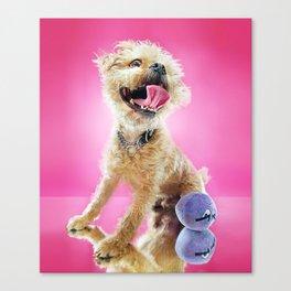 Super Pets Series 1 - Super Cosmo Canvas Print
