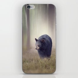 Black bear walking in the woods iPhone Skin