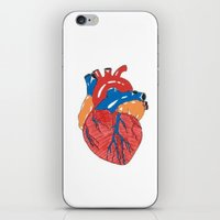 anatomical heart iPhone & iPod Skins featuring Anatomical Heart by KA Doodle