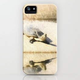 Hilaire's toadhead turtle iPhone Case