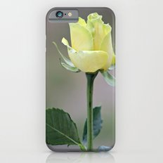 Yellow Rose iPhone 6s Slim Case