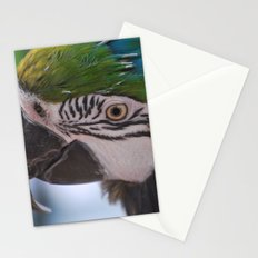 Beautiful Parrot Head Stationery Cards