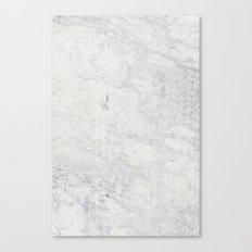 Silver 3D Canvas Print