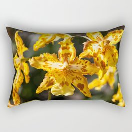 Orchids 17-3 Rectangular Pillow