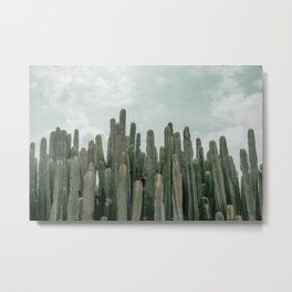 Cactus Jungle Metal Print