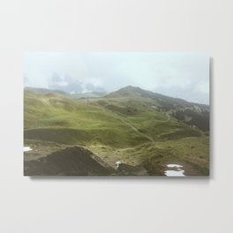 On the Klein Metal Print