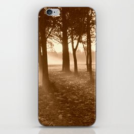 Misty Winters Morning iPhone Skin