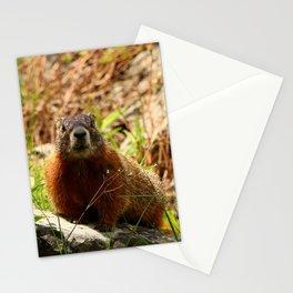 Marmot On A Rock Stationery Cards