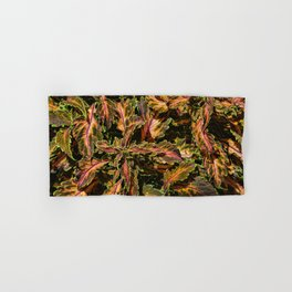 Coleus Foliage Hand & Bath Towel