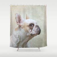 french bulldog Shower Curtains featuring French bulldog  by Pauline Fowler ( Polly470 )