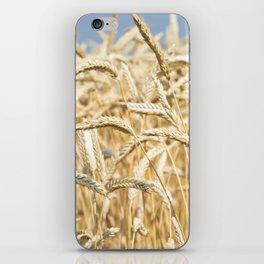 Golden Wheat iPhone Skin