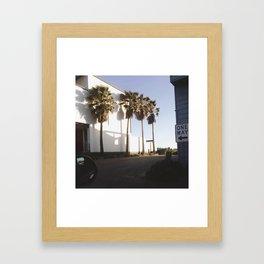 Palms for days Framed Art Print