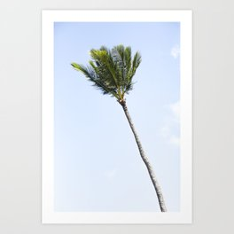 Palm tree party of one Art Print