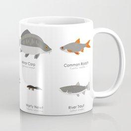 Infographic Guide to Water Animals Coffee Mug