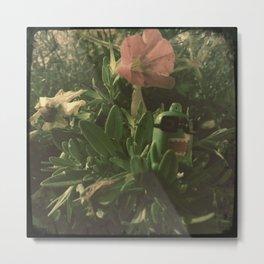 Domo Plant Dwelling Metal Print