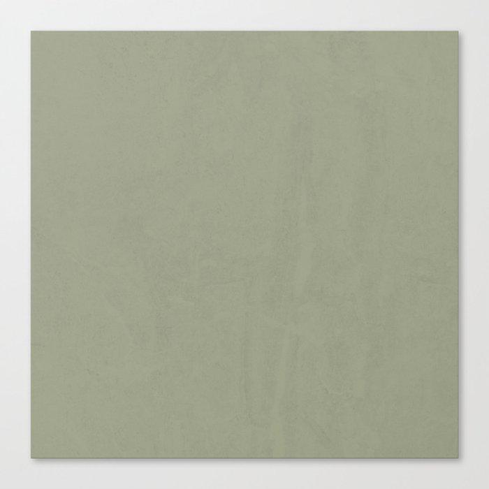 Simply Green Tea Canvas Print