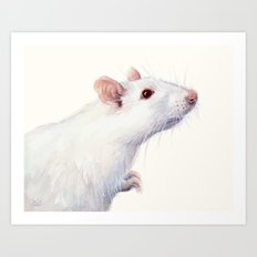 White Rat Watercolor Albino Rat Animal Art Print