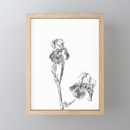 Spring Iris Blooms Framed Mini Art Print