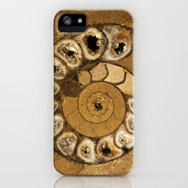 An ancient treasure in browns iPhone Case