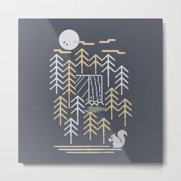 Wild Squirrel - Animal Print - Animals - Wildlife - Outdoors - Geometric Metal Print