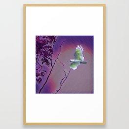 Lost Bird Framed Art Print