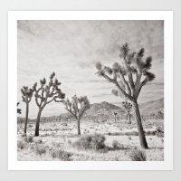 Joshua Tree Grey By CREYES Art Print