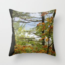 Columbia Rover Gorge Washington Trees in Autumn Throw Pillow