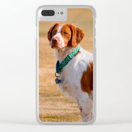 Brittany Spaniel Dog Beautiful Clear iPhone Case