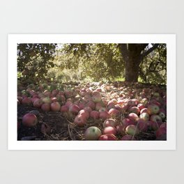 Under the Apple Tree Art Print