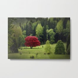 Unique red tree in a meadow of green trees Metal Print
