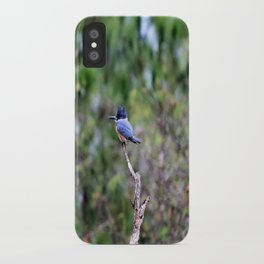 Perilously Perched iPhone Case