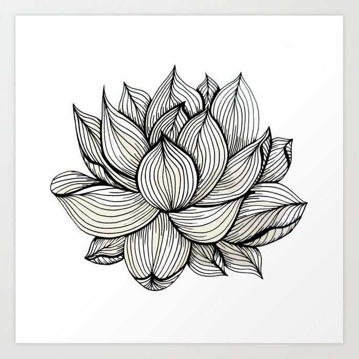 Lotus Flower Black And White Nature Organic Design Drawing Abstract Unique Lines Pattern Art Print By Treelovergirl