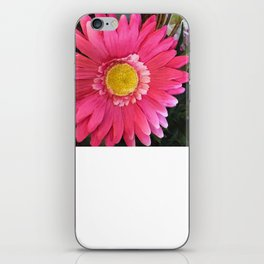 Think Spring iPhone Skin