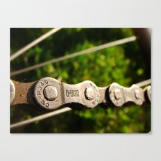 Chains in Nature Canvas Print
