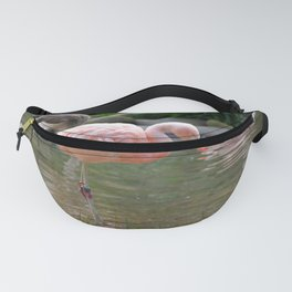 Chilean Flaming Fanny Pack