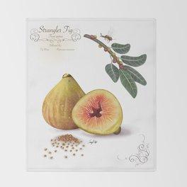 Strangler Fig and Pollinator Throw Blanket