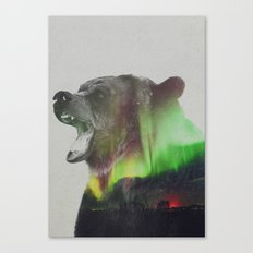 Bear In The Aurora Borealis Canvas Print
