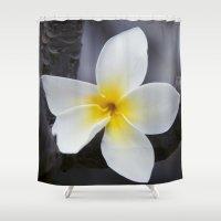 singapore Shower Curtains featuring Plumeria obtusa Singapore White Blossom by Sharon Mau