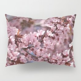 Pink & Pretty Pillow Sham